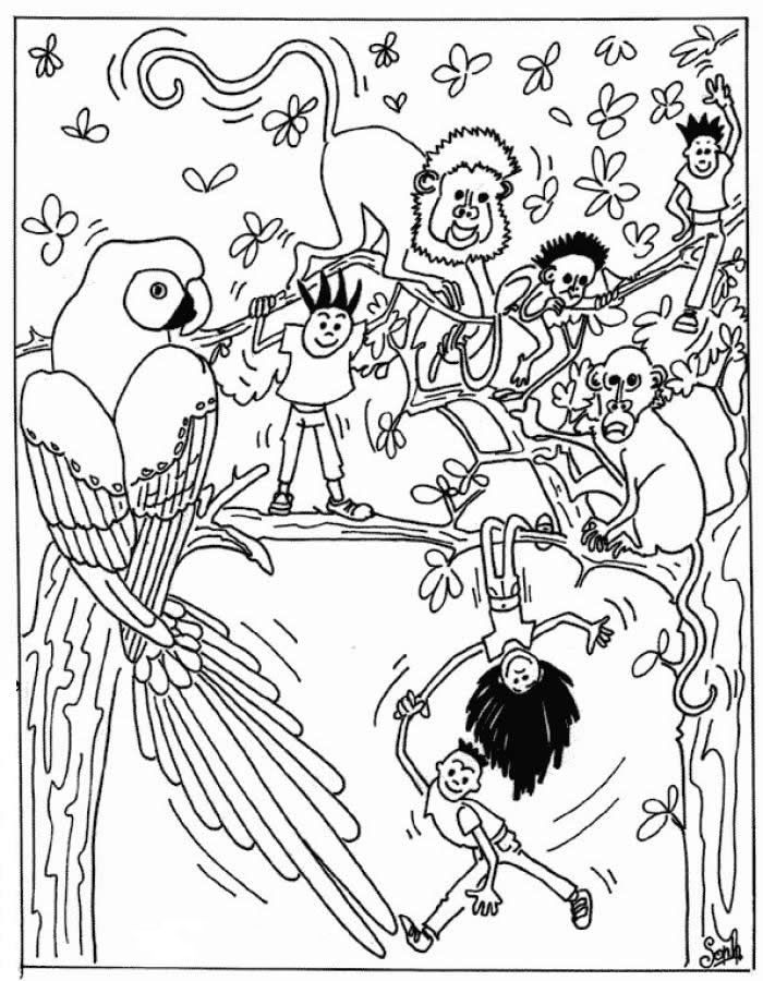 Wild Animals Coloring Pages Jungle
