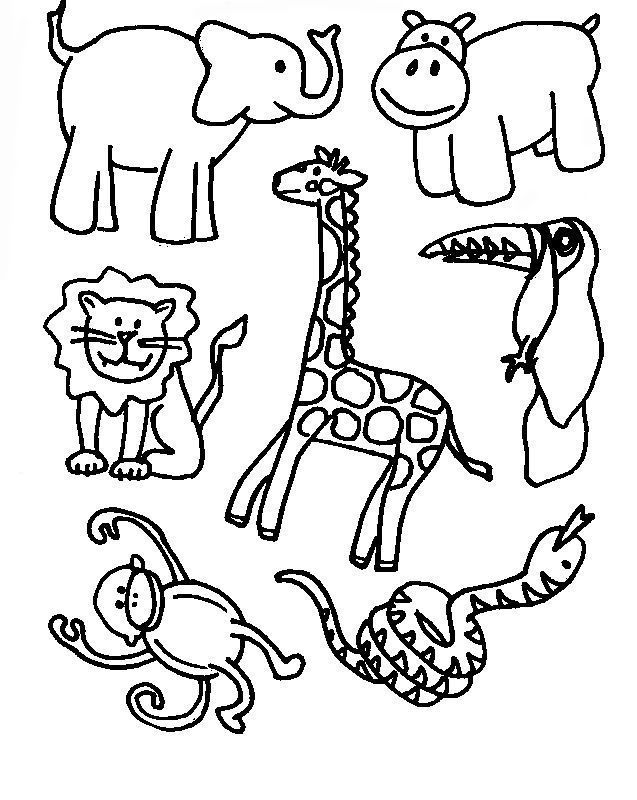 Wild Jungle Animals Coloring Pages