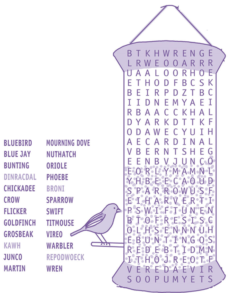 Word Search For Kids Bird