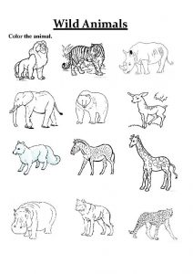 Worksheets for 5 year olds animal