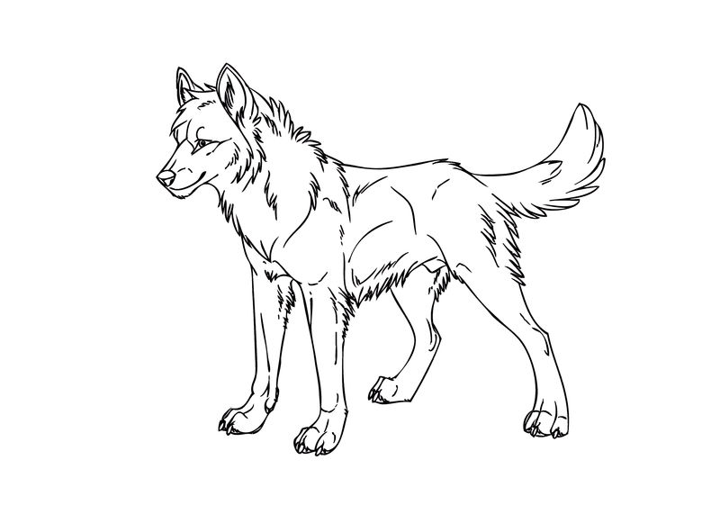Young Wolf Coloring Pages