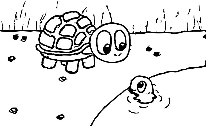 Zany Tortoise Turtle Coloring Page