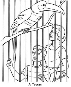 Zoo animals coloring pages for kids