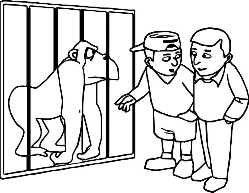 Zoo Gorilla And Children Coloring Page