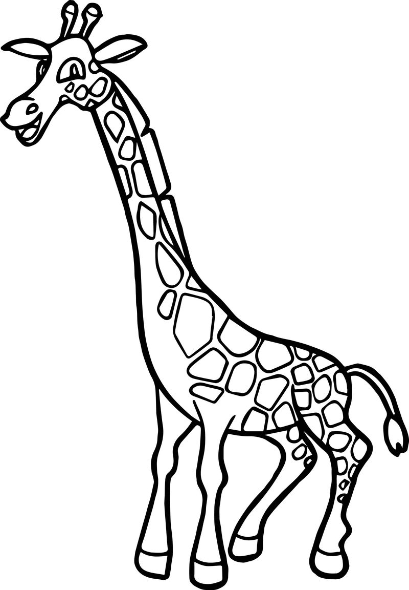 Zoo Happy Giraffe Coloring