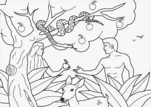 Adam and Eve Coloring Pages - Adam and Eve Coloring Pages Printable 11a