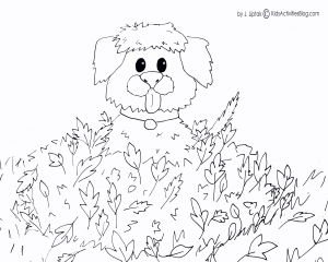 Animal Coloring Pages for Kids - Kids Coloring Animals Color Pages for Kids Gtr Coloring Pages Best Coloring Printables 0d 20n