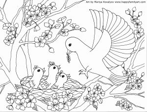 Bird Coloring Pages - Pretty Bird Coloring Pages Luxury Spring Birds Coloring Pages Flower Coloring Pages 8d