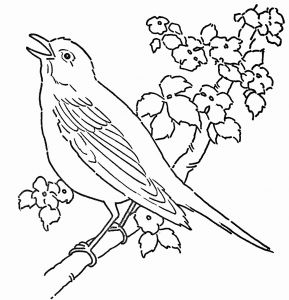 Bird Coloring Pages for Kids - Coloring Page A Bird Nest Printable Coloring Pages for Kids 3t