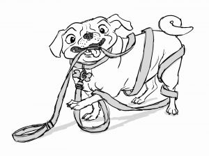 Build A Bear Coloring Pages - Puppy Coloring Pages Printable Free Fresh Puppy Coloring Page Printable Elegant Awesome Od Dog Coloring Pages 6b