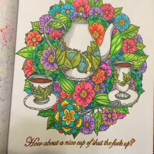 Calm the F Down Coloring Book Pages - Amazon Calm the F Ck Down An Irreverent Adult Coloring Book 12l