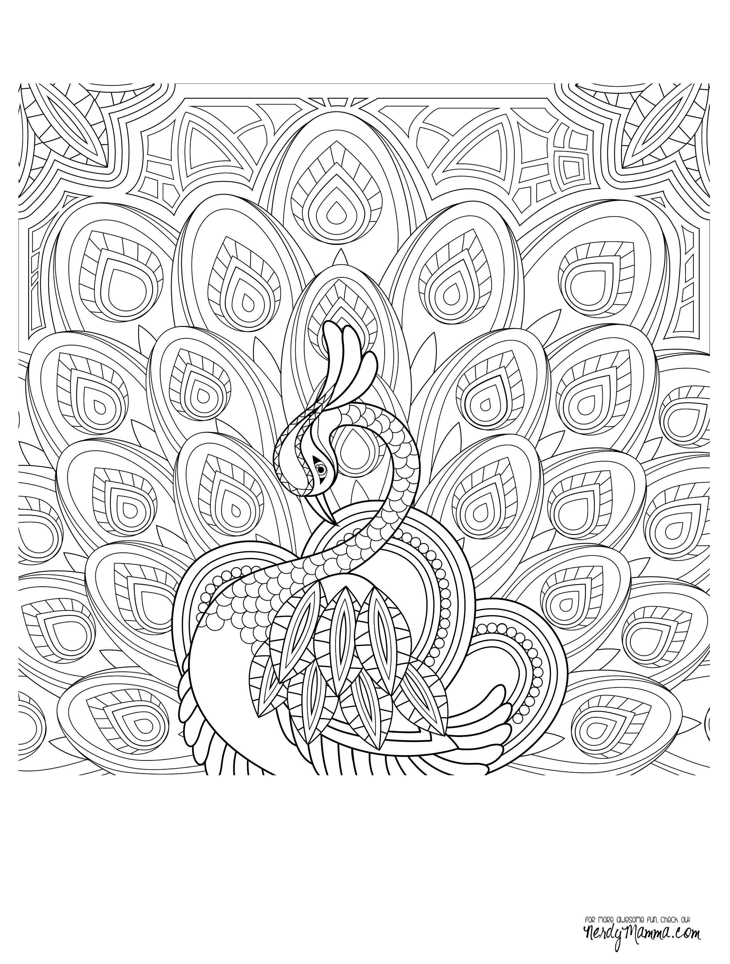 colorama coloring pages to print Download-Peacock Feather Coloring pages colouring adult detailed advanced printable Kleuren voor volwassenen coloriage pour adulte anti stress kleurplaat voor 3-b