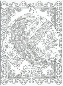 Colorama Coloring Pages to Print - Peacock Coloring Page for Adults 2 31 20i