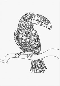 Coloring Activity Pages - Birds Coloring Book Parrot Colouring Pages Fresh Coloring Printables 0d – Fun Time 16d