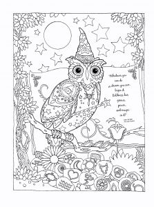Coloring Pages Birds - Coloring for Kids Fresh Cool Coloring Page Unique Witch Coloring Pages New Crayola Pages 0d 10j