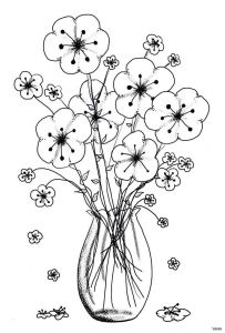 Coloring Pages butterfly - Download Image 6n