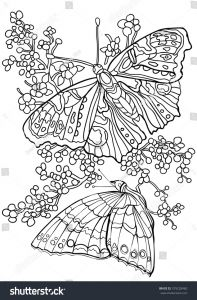 Coloring Pages butterfly - Coloring Pages Of Flowers and butterflies 13 M butterfly Flowers Coloring Book Adult 13g