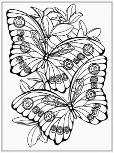 Coloring Pages butterfly - Best Beautiful Coloring Pages Fresh Https I Pinimg 736x 0d 98 6f for 13m