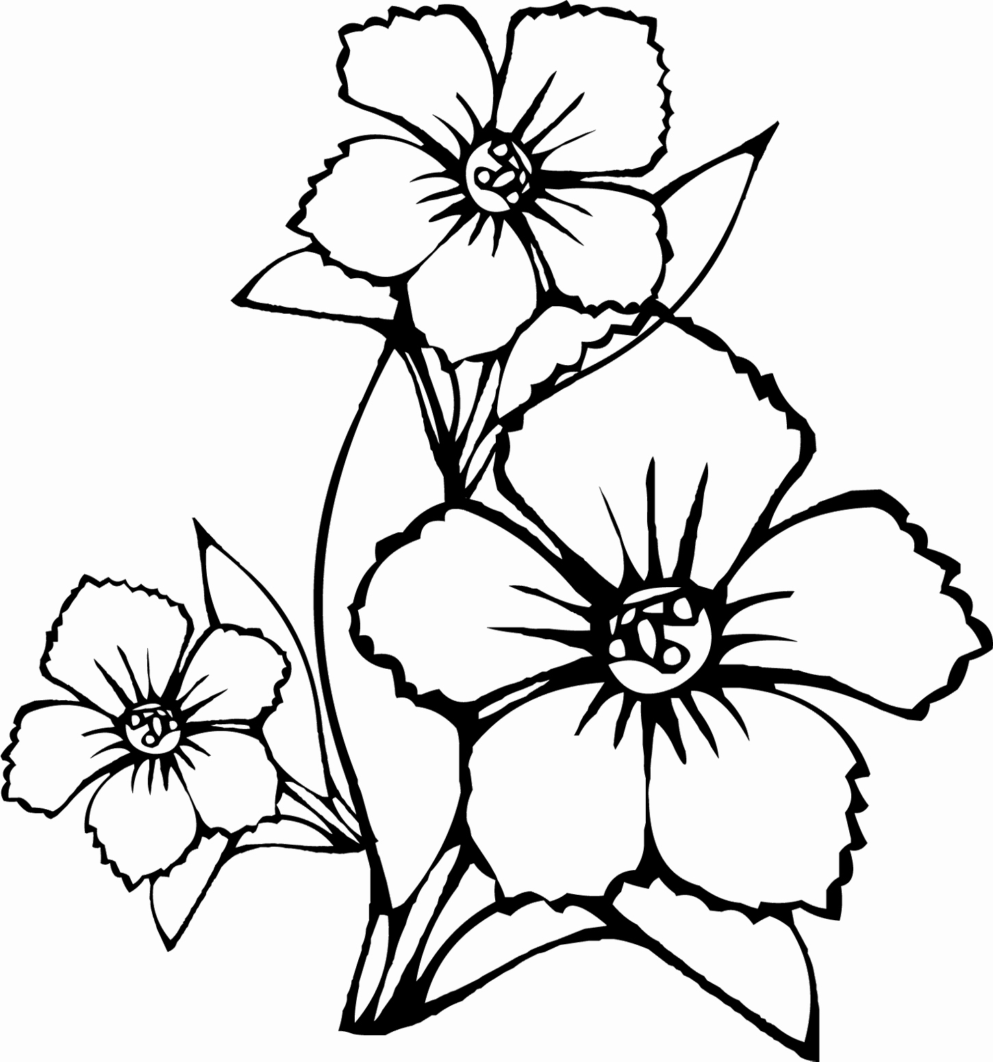 coloring pages hawaiian flowers Collection-Hawaiian Flower Coloring Page California State Flower Coloring Page Coloring Pages Hawaiian 18-a