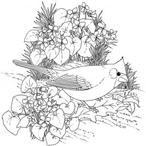 Coloring Pages Of Birds and Flowers - Hard Bird Coloring Pages for Adults Enjoy Coloring Printables Adult Coloring Pages Flowers 19f