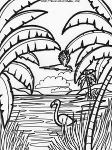 Coloring Pages Rain forest - Flamingo Coloring Page 12m