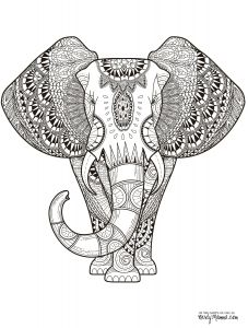 Coloring Pages to Color - Elephant Coloring Pages for Kids Elephant Coloring Pages Awesome Color Page New Children Colouring 0d 8i