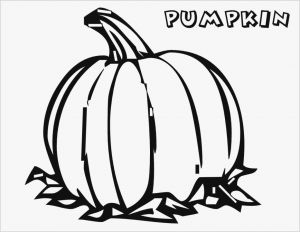 Coloring Pages to Download for Free - Download Lovely Coloring Halloween Coloring Pages Websites 29 Free 0d Awesome 11t