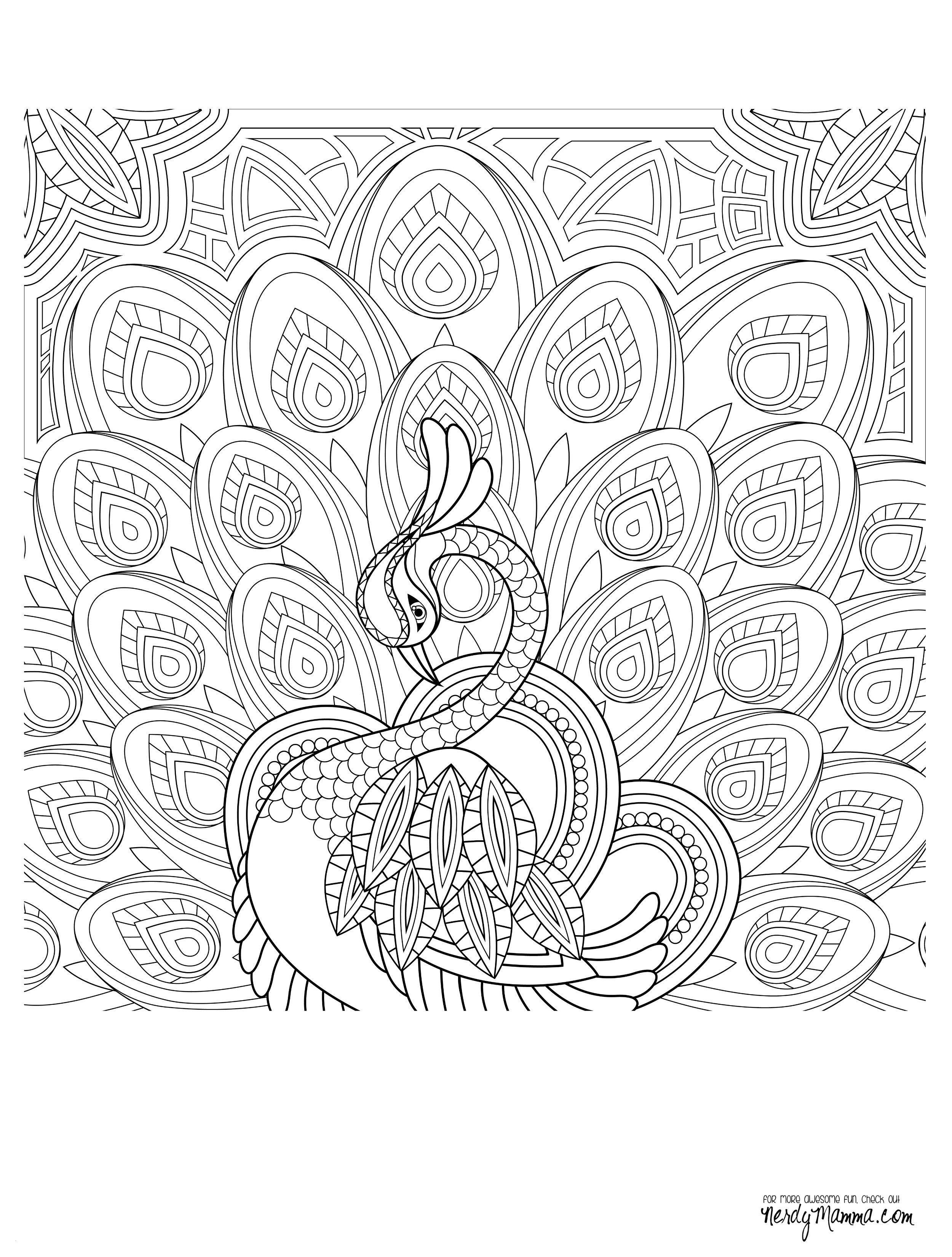 coloring pages you can print Download-Hen Coloring Page Hen Coloring Page Coloring Pages for Kides Elegant Coloring Printables 0d 20-r