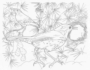 Complicated Animal Coloring Pages - Fresh Intricate Coloring Pages for Adults Coloring Sheets Collection 10o