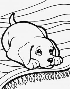 Cute Animal Coloring Pages - Baby Animal Coloring Pages Coloring & Activity Luxury Cute Baby Animal Coloring Pages Coloring Pages 16t