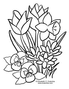 Daffodils Coloring Pages - Easy to Draw Spring Spring Flowers Coloring Pages Lovely Spring Coloring Pages 16r