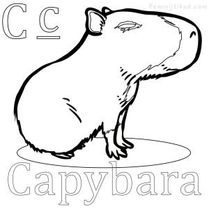 Donkey Ollie Coloring Pages - Capybara Coloring Pages Printable 1r