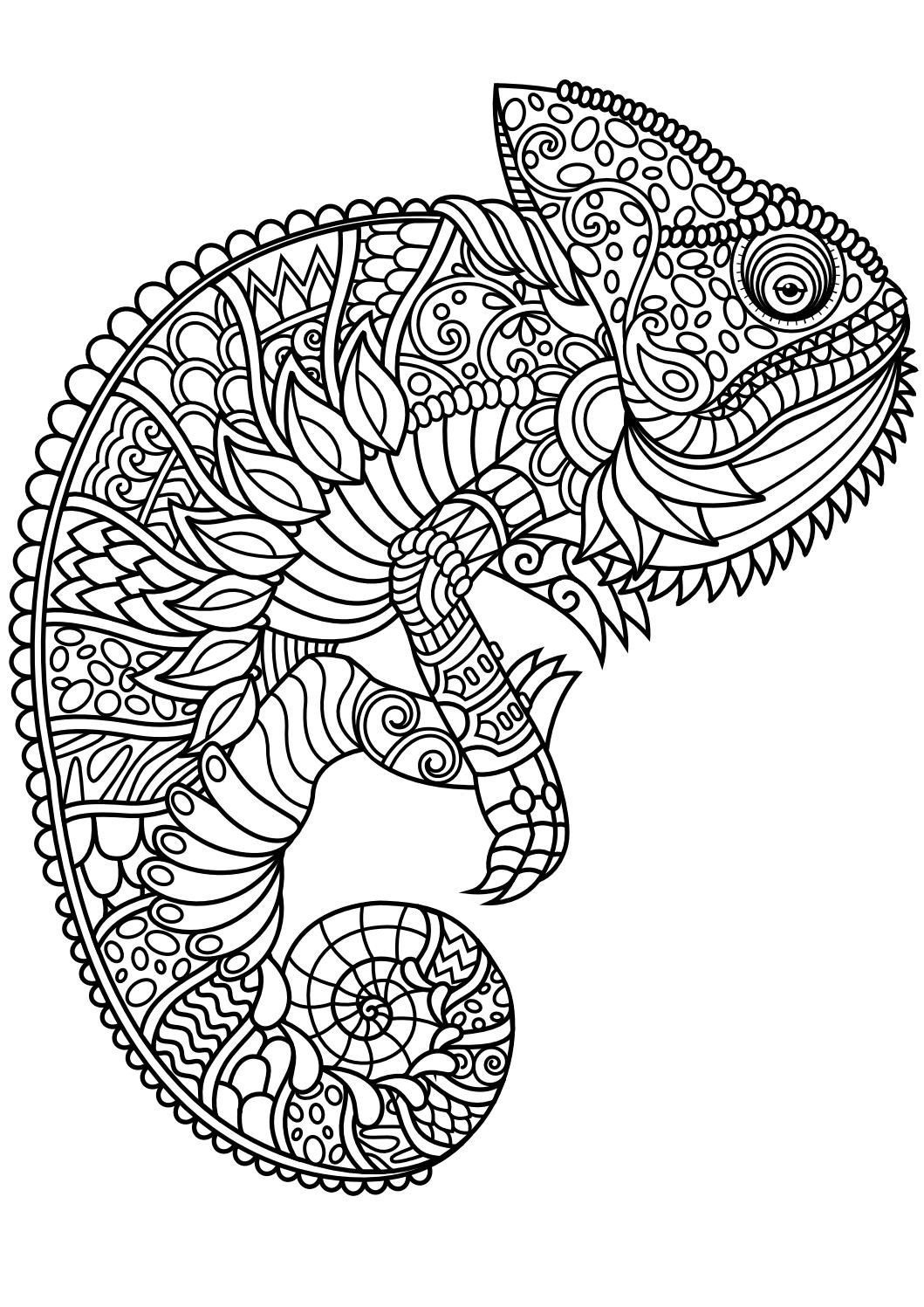 23 Elephant Mandala Coloring Pages