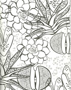 Exotic Coloring Pages - Succulent Coloring Page Rock Plant Zebra Plant Aloe and More 10t