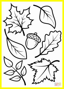 Fall Coloring Pages Free Printable - Printable Coloring Worksheets for toddlers Engaging Fall Coloring Pages Printable 26 Kids New 0d Page for 15r