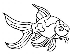Fish Coloring Pages Pdf - Outstanding Printable Fish Coloring Pages Wallpapers Lobaedesign 10d