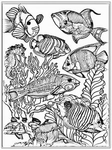 Fish Coloring Pages Pdf - Adult Free Fish Coloring Pages 7o