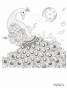 Fish Coloring Pages Pdf - Peacock Coloring Pages Fish to Color Unique Black Peacock Colouring Pages ora 12a