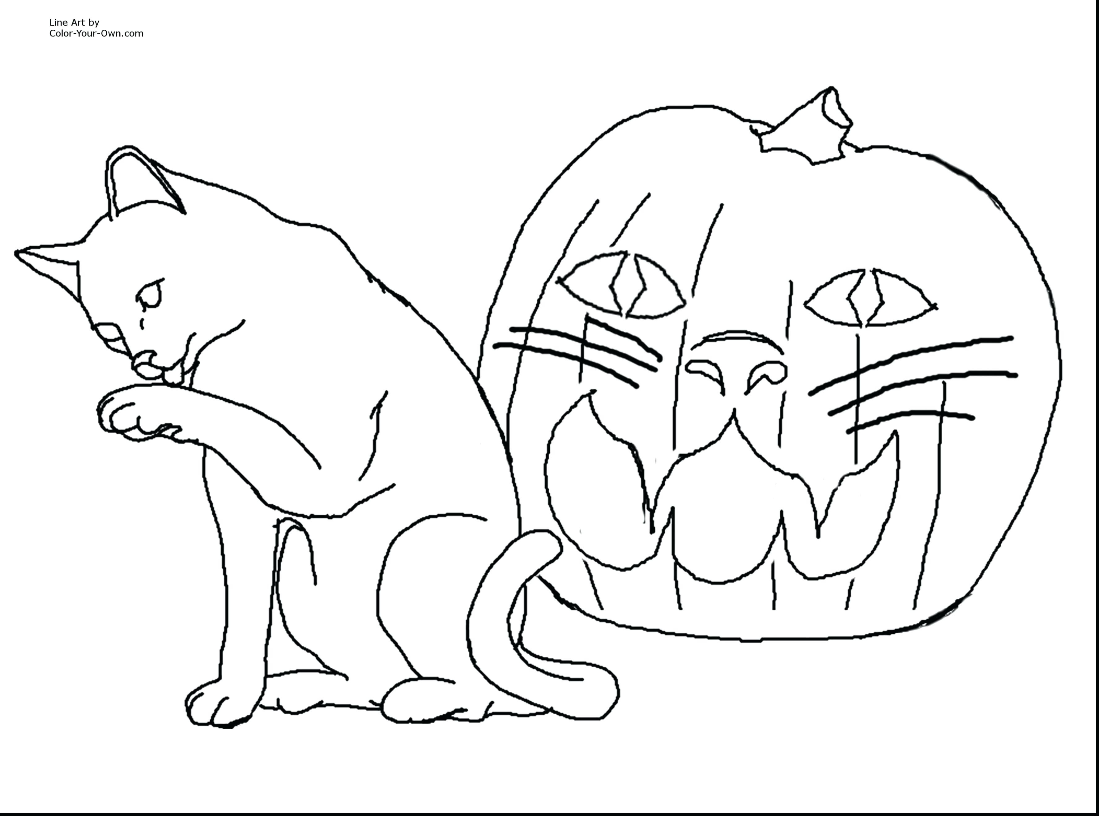 28 Free Animal Coloring Pages for Kids Download - Coloring Sheets