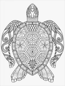 Free Animal Coloring Pages for Kids - Animal Coloring Pages for Adults 10q