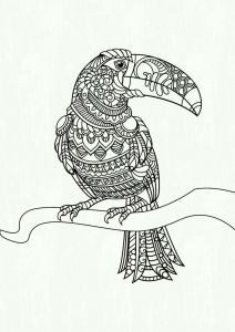 Free Coloring Pages for Boy - Free Color Pages for Boys Printable Parrot Colouring Pages Fresh Coloring Printables 0d – Fun Time 6c