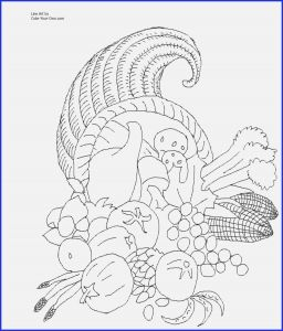 Free Cornucopia Coloring Pages - Thanksgiving Color Pages Free Cornucopia Coloring Pages Heathermarxgallery 9p