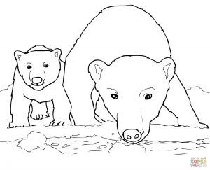 Free Dog Coloring Pages - Polar Bear Coloring Pages Polar Bear Coloring Book Awesome Best Od Dog Coloring Pages Free 9q