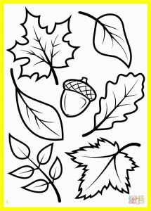 Free Printable Fall Coloring Pages for Preschoolers - Free Christian Clipart Inspirational Engaging Fall Coloring Pages Printable 26 Kids New 0d Page for 13s