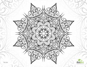 Free Printable Kaleidoscope Coloring Pages - Nicole Dicebird Free Adult Coloring Pages to Print Printable Coloring Sheets for Adults 11a