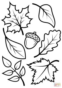 Free Printable Leaf Coloring Pages - Cool Free Coloring Book Pages Inspirational Vases Flowers In Vase – Fun Time 10n