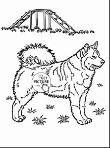 Free Wedding Coloring Pages to Print - Dress Coloring Pages Husky Coloring Pages Beautiful Husky Coloring 0d Free Coloring Pages Fun Time 16f