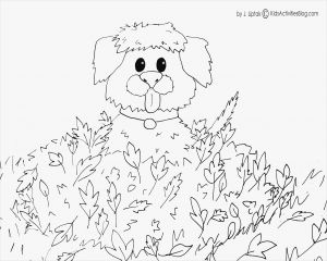 Fun Coloring Pages - Coloring Pages for Kidz Coloring Pages for Kides Fresh Coloring Printables 0d – Fun Time 15f