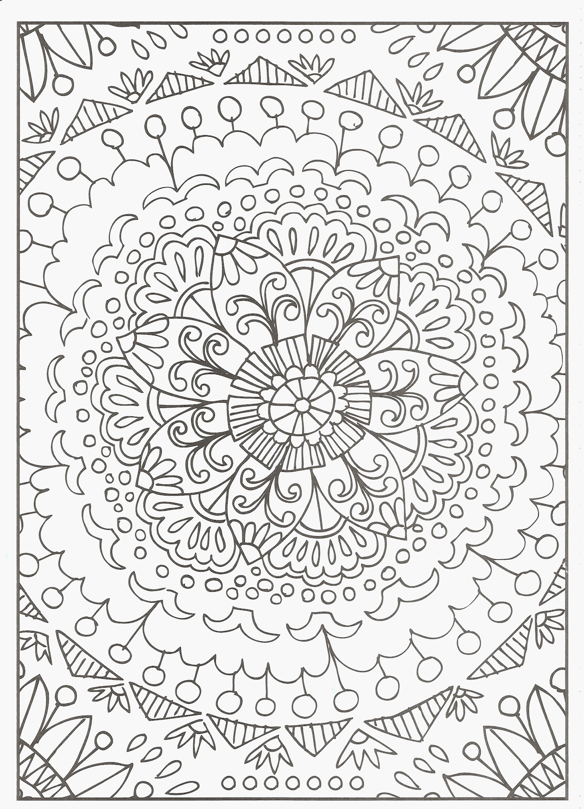 gecko coloring pages Download-Gecko Coloring Pages Free Advanced Coloring Pages New Gecko Coloring Page Best 77 Best 20-t