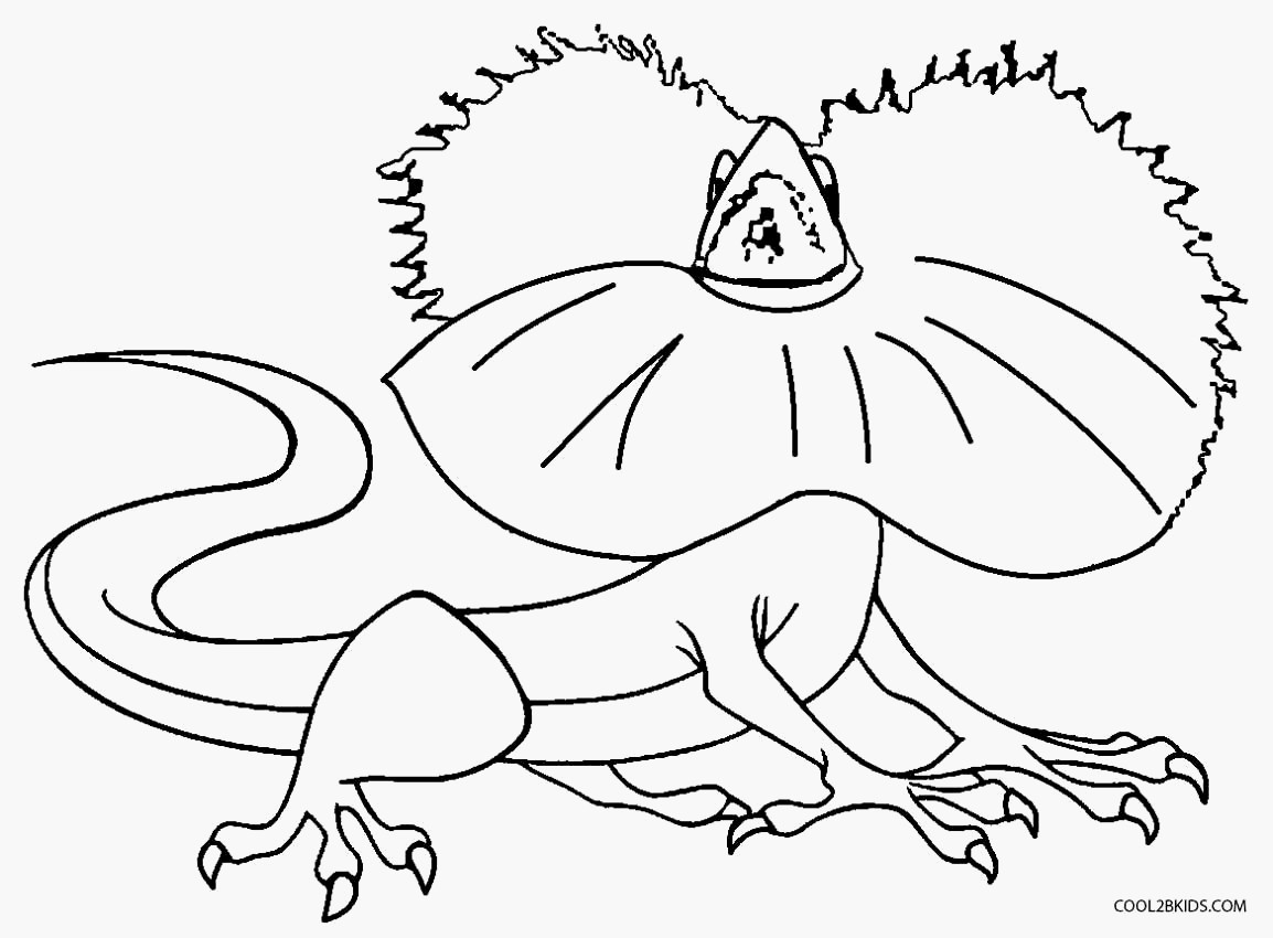 gecko coloring pages Download-Gecko Coloring Pages Lizards Coloring Pages Cool Coloring Pages 9-j